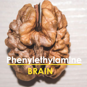 PEA - Your Brain's Natural Stimulant for Higher Performance